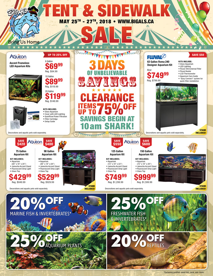 Tent Sale Page 1