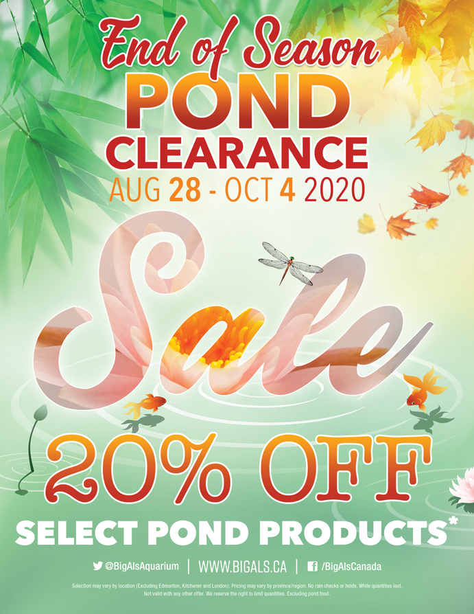 End of Pond Season Clearance Sale