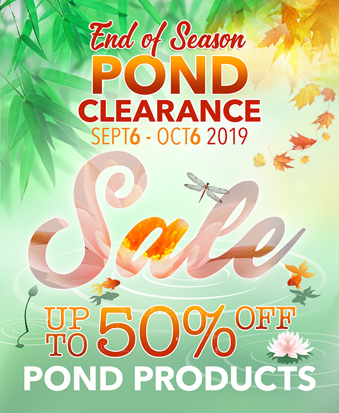 End of Season Pond Clearance Sale 2019
