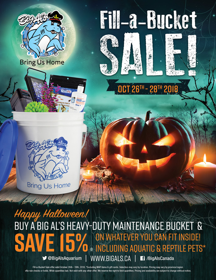 Fill-a-Bucket Halloween poster