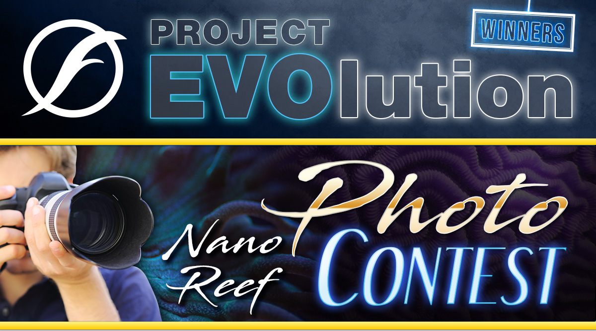 Project EVOlution Nano Reef Aquarium Photo Contest - BigAlsPets.com