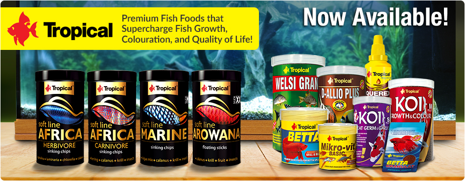 Tropical Fish Foods