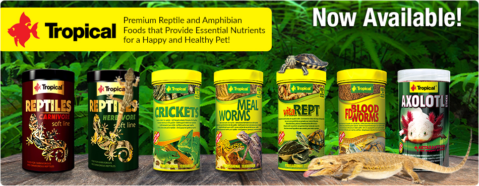 Tropical Reptile Food