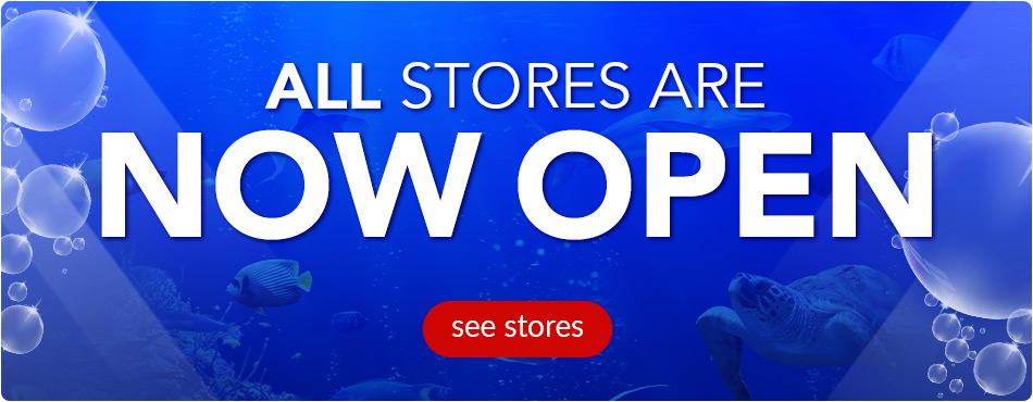 All Stores Now Open